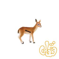بچه غزال تامسون Thomson's Gazelle Fawn 387123