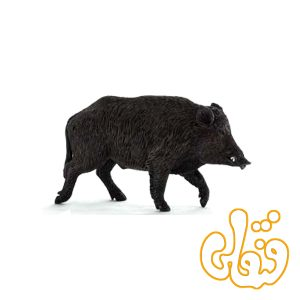 گراز وحشی Wild Boar 387160
