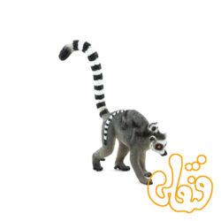 میمون دم حلقه لمور با بچه Ring Tailed Lemur with Baby 387237