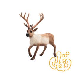گوزن شمالی Reindeer 387186