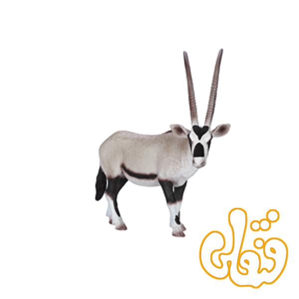 غزال بزرگ آفریقا Oryx 387242