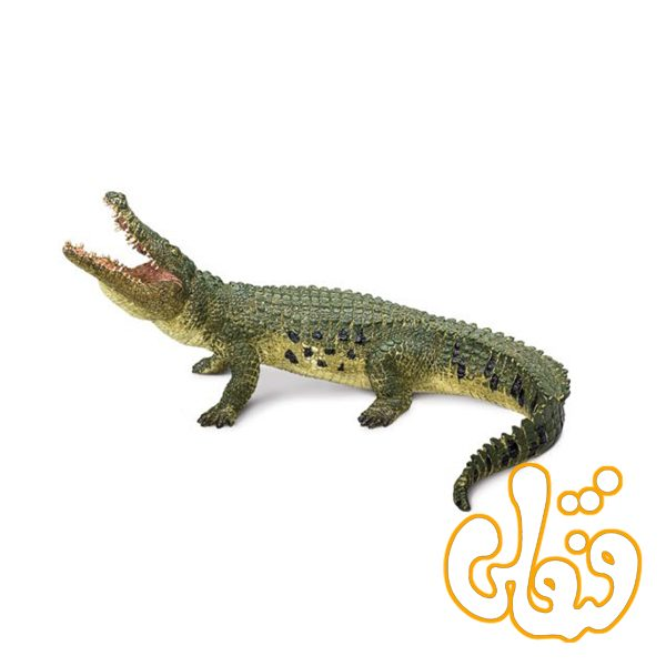 کروکدیل با آرواره مفصل دار Crocodile with Articulated Jaw 387162