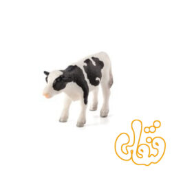 گوساله ایستاده هولشتاین Holstein Calf Standing 387061