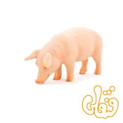خوک نر Pig Boar 387080