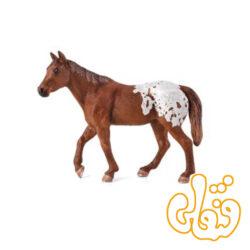 اسب اپولوسا شاه بلوطی Appaloosa Stallion Chestnut Blanket 387150