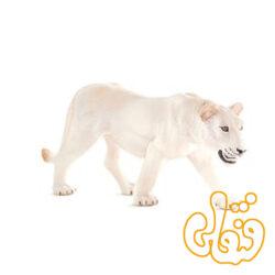 شیر سفید ماده White Lioness 387207