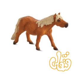 کره اسب شتلند Shetland Pony 387231