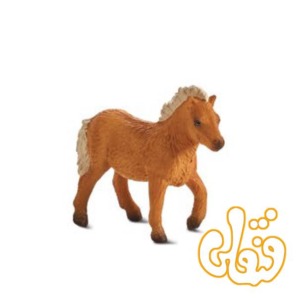 کره اسب کوتاه شتلند Shetland Foal 387232