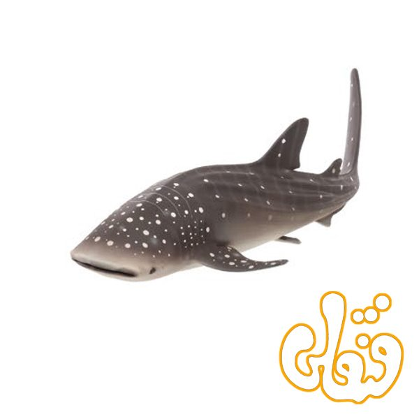 کوسه نهنگ Whale Shark 387278