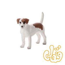 سگ تریر جک راسل Jack Russell Terrier 387286