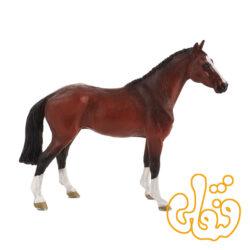اسب هلندی اهلی Dutch Warmblood 387294