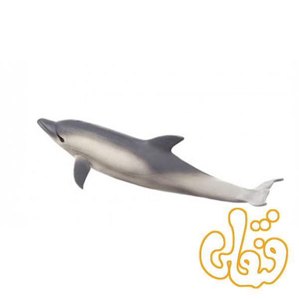 دلفین Common Dolphin 387358