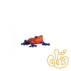 قورباغه درختی سمی Poison Dart Tree Frog 381016
