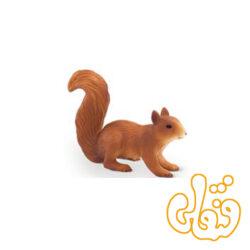 سنجاب دونده Squirrel Running 387032