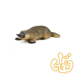 اردک منقاردار پلاتیپوس Duck-billed Platypus 387106
