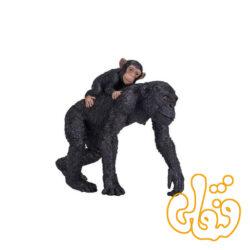 شامپانزه با بچه Chimpanzee and Baby 387264