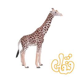 زرافه نر Giraffe Male 381008