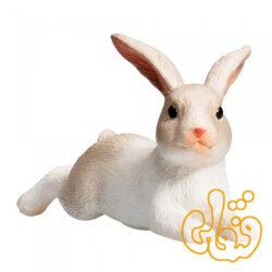 خرگوش نشسته Rabbit Sitting 387141